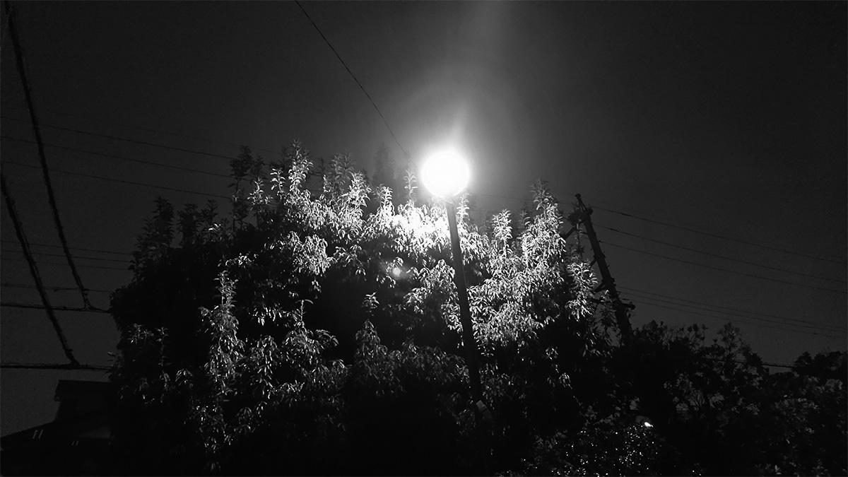夕方から雨、名古屋オフィスのとある1日